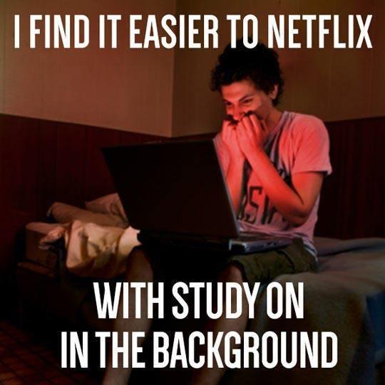 Netflix studying